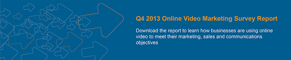 2013 Online Video Marketing Survey Results and Trends Report
