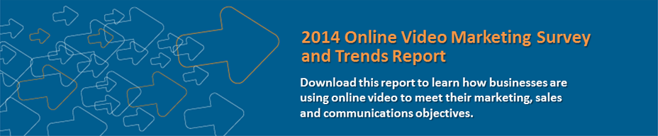 2014 Online Video Marketing Survey Results and Trends Report