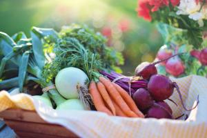healthy eating with employee wellness program